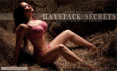 haystack secrets covers 01