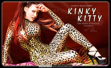 kinkykitty covers 01