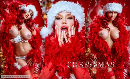 naughty naked christmas covers 01