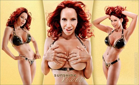 sunshine vixen covers 01