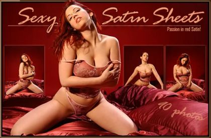 03 sexy satin sheets covers 01