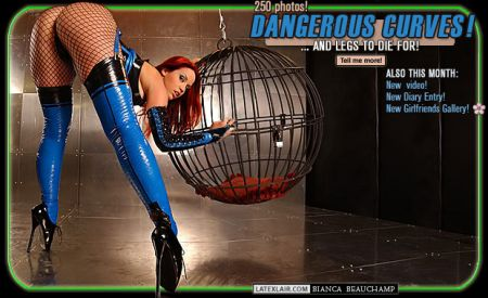 05 dangerous curves covers 2004 05 dangerouscurves 03