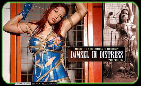 12 damsel in distress covers 2004 12 damselindistress 05np