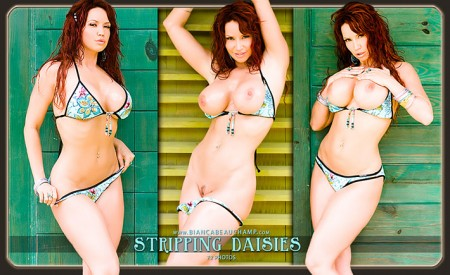 08 stripping daisies covers 02 preview