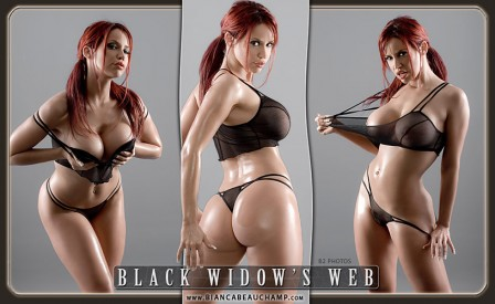 09 black widows web covers 01