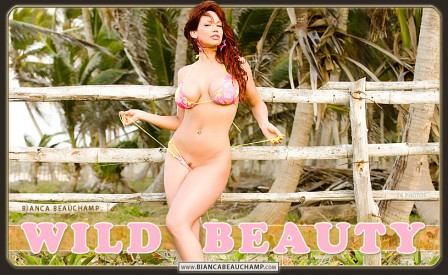 09 wild beauty covers 01