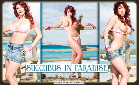10 succubus in paradise covers 03