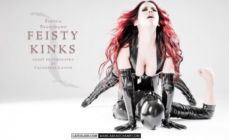 11 feisty kinks p2 0 feistykinks covers 04