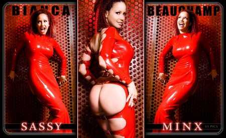 12 sassy minx 0 sassyminx covers 01