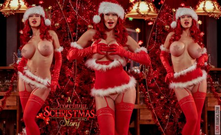 12 a scorching christmas story covers 06