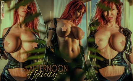 06 an afternoon of felicity covers 05