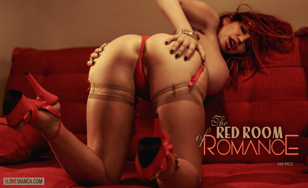 02 the red room of romance covers 04