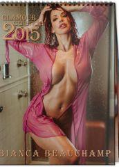 calendar2015-glam-cover